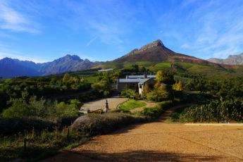 2017-04-01 - B - Stellenbosch - Tokara (12)