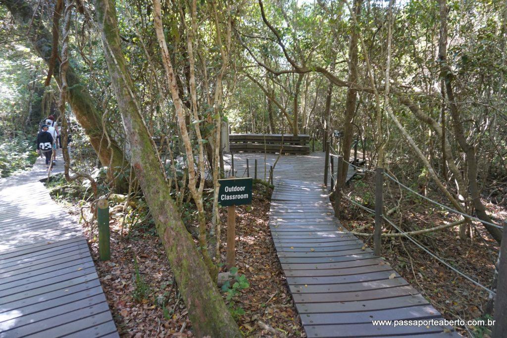 As trilhas são assim, todas demarcadas e tudo super bem conservado!