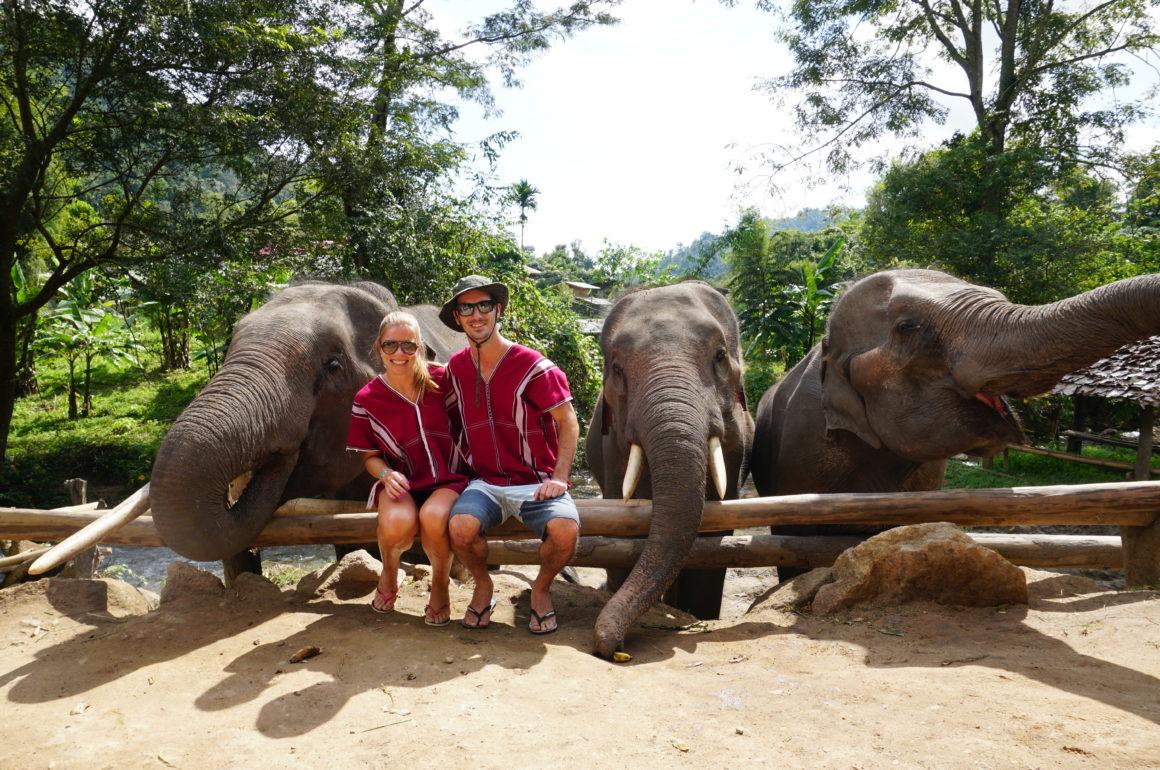 Experiência mais que perfeita no Elephant Freedom!